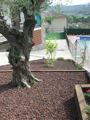 Jardineria flor de neu for Piedra volcanica para jardin