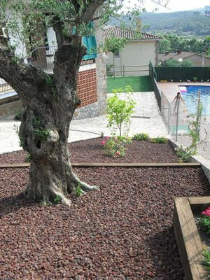 Jardineria flor de neu for Jardines con piedra volcanica